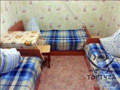 tortuga-dom2-05.jpg